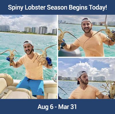 Florida Lobster Season Basics by Jason Taub, Realtor in Fort Lauderdale, Florida